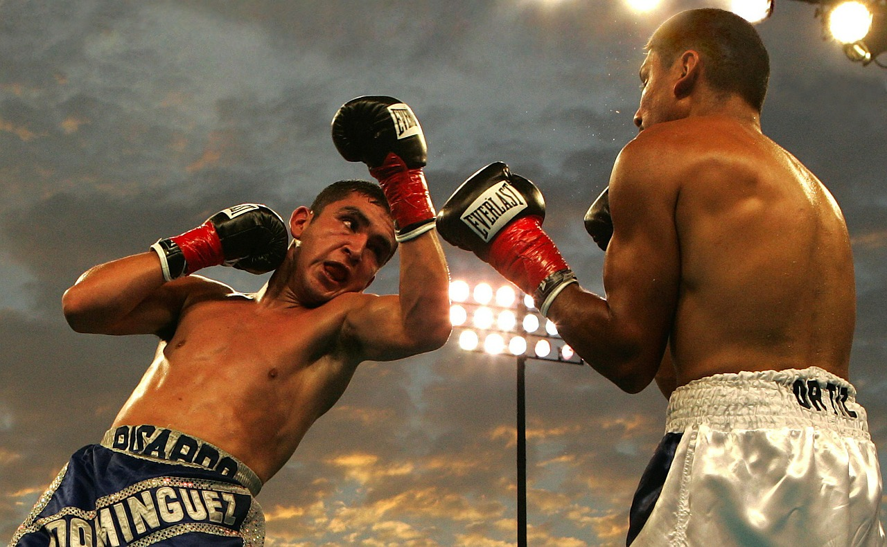 Five boxing games for iOS and Android free and with good graphics